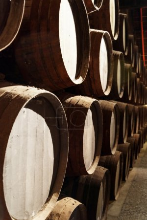Side view of oak barrels stacked in the old cellar with aging Po