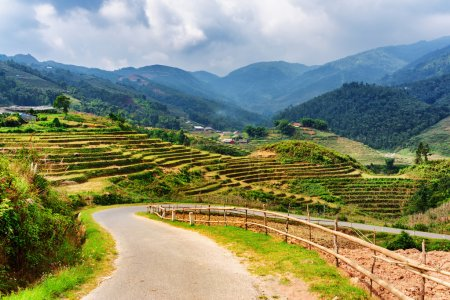 Bending road among rice terraces in mountains of Sa Pa, Vietnam
