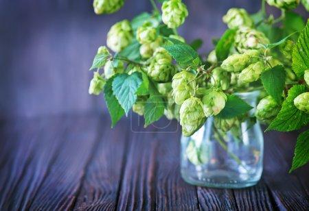 fresh hops in glass vase
