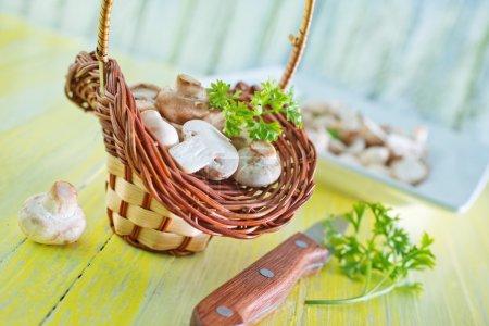 Raw mushrooms in basket