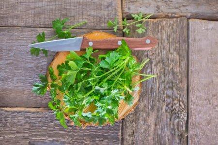 Fresh parsley on wooden board