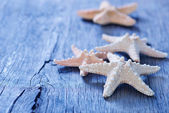 Starfishes on wooden background