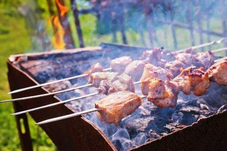 tasty meat Kebab