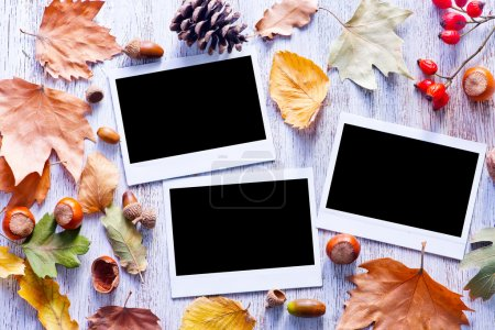Autumn photos background