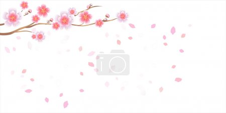 Branch of sakura with flowers. Cherry blossom branch with petals