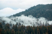 Mountain with fog