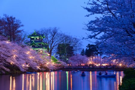 Cherry blossoms and Takada Castle in the twilight