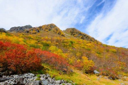 Photo pour Montagnes Hotaka, Karasawa en automne dans les Alpes du nord du Japon - image libre de droit