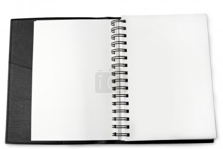 Blank pages in book