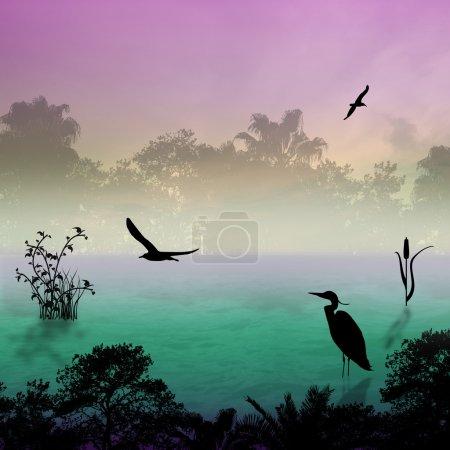 Photo pour Silhouette d'aigrette sur le lac au matin brumeux, fond d'illustration - image libre de droit