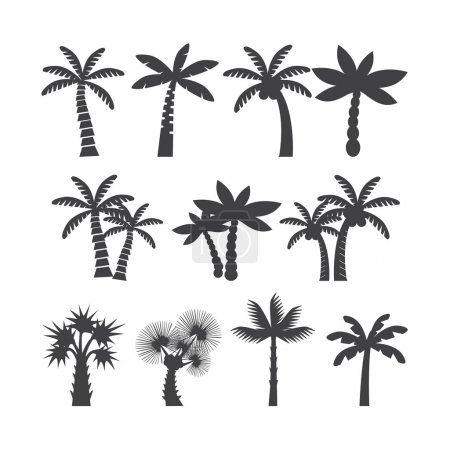 Palm tree icon set,  vector eps10