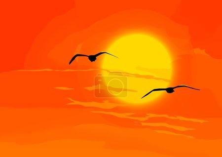 Heaven. Birds with orange sunset