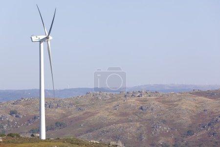 Windmill at windfarm