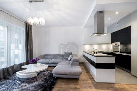Photo pour Cuisine et coin salon dans la maison de luxe à la scandinave - image libre de droit