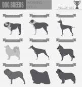 Dog breeds Working (watching) dog set icon Flat style Vector illustration
