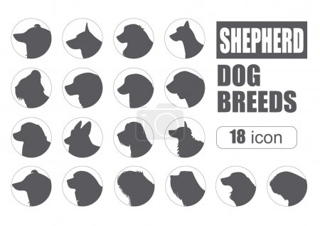 Dog breeds. Shepherd dog set icon. Flat style