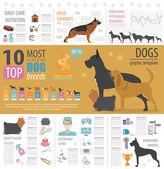 Dog info graphic template Heatlh care vet nutrition exhibition Vector illustration