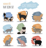 Cat breeds icon set flat style