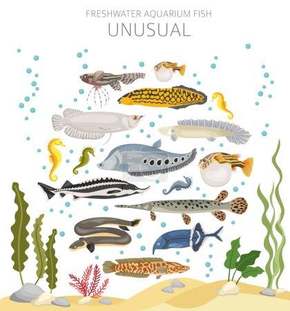Pescado inusual. Acuario de agua dulce icono de pescado conjunto de estilo plano aislado en blanco. Ilustración vectorial