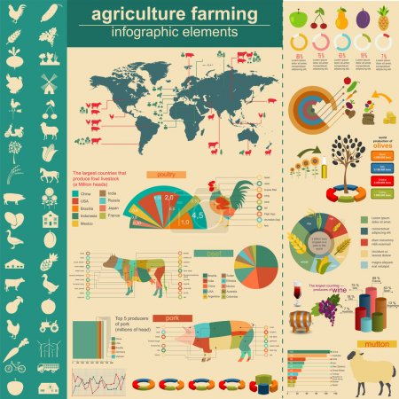 Illustration for Agriculture infographics. Vector illustration - Royalty Free Image