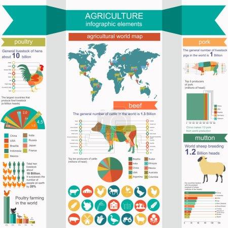 Photo pour Agriculture, infographie de l'élevage, infographie vectorielle illustrationstry info graphics. Illustration vectorielle - image libre de droit