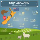 New Zealand  infographics statistical data sights Vector illustration