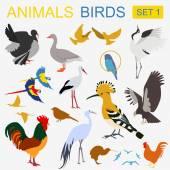Birds icon set Vector flat style