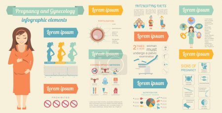 Illustration for Gynecology and pregnancy infographic template. Motherhood elements. Constructor for creating your own design, infographics. Vector illustration - Royalty Free Image