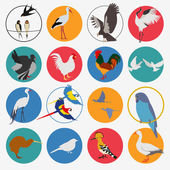 Birds icon set Vector flat style Vector illustratio