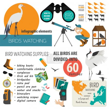 Illustration for Bird watching infographic template. Vector illustration - Royalty Free Image