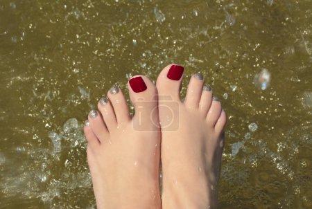 Photo pour Pédicure d'eau recouvert de laque rouge et or sur les pieds dans l'étang . - image libre de droit