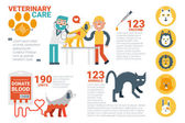 Veterinary care infographic