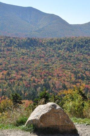 Foto de Foliage de caída en el Bosque Nacional de las Montañas Blancas en New Hampshire, EE.UU. - Imagen libre de derechos