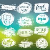 Labels with vegetarian and raw food diet designs Organic food tags and elements set for meal and drinkcafe restaurants and organic products packagingVector illustrated bio detox logo