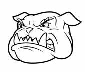 Aggressive bulldog 2