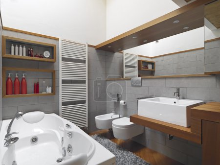 interior view of modern bathroom