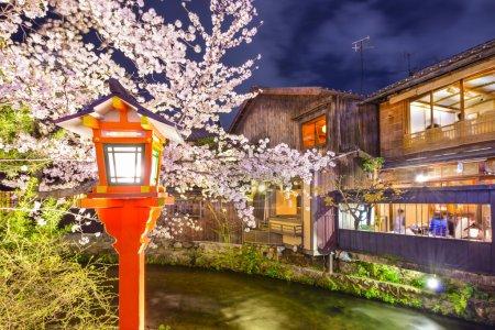 Kyoto, Japan Spring River View