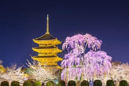 Kyoto Pagoda in the Spring