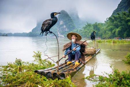 Photo pour Pêcheur de cormorans et son oiseau sur la rivière Li à Yangshuo, Guangxi, Chine - image libre de droit