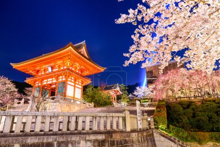 Spring Night in Kyoto