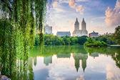 """Постер, картина, фотообои """"Центральный парк Нью-Йорк Сити"""""""