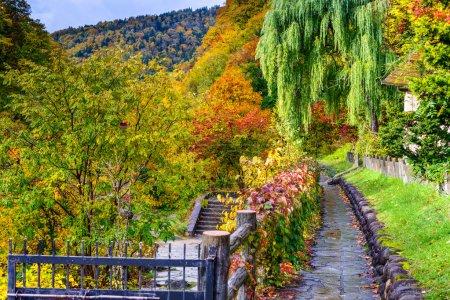 Foto de Jozankei, Japón follaje de otoño . - Imagen libre de derechos