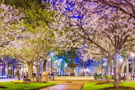 Macon, Georgia in Spring