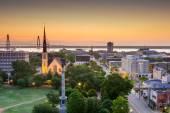 Charleston, South Carolina, USA skyline over Mario