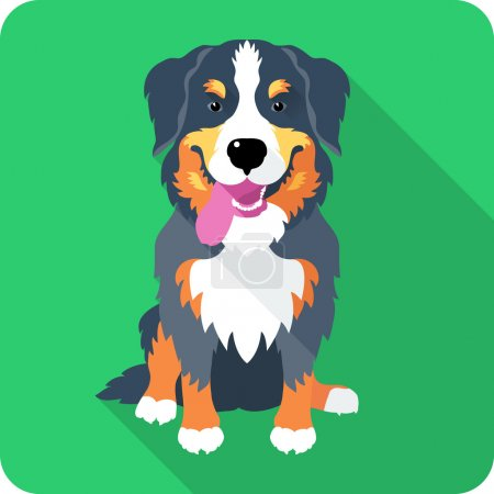 Bernese Mountain Dog dog icon flat design