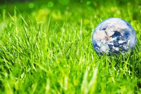 Photo for Environment concept, earth globe in the grass background - Royalty Free Image