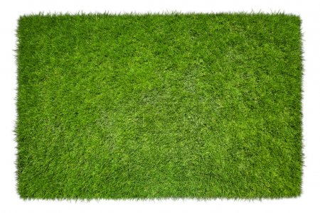 Photo for Square of green grass field over white background - Royalty Free Image