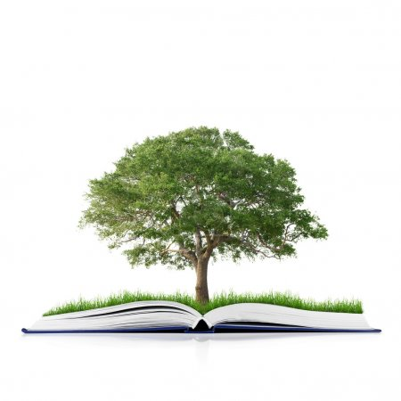 Book of nature with grass