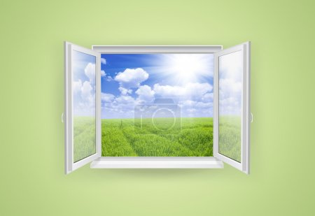 Open window with green grass