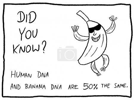 Illustration for Fun fact trivia - useful doodle cartoon illustration usable as a webcomic or for funny section of a newspaper. - Royalty Free Image